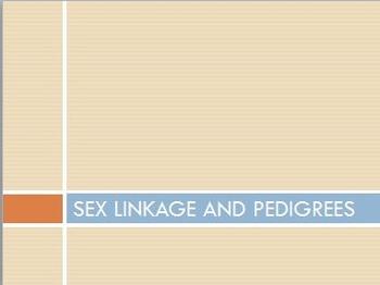Year 12 Biology - Sex Linkage and Pedigrees
