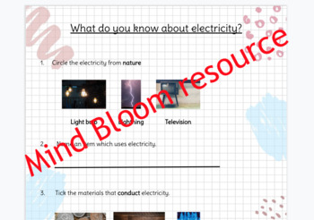 Year 4 (3rd Grade) Science Electricity assessment