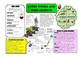 Year 4 Science Knowledge Organisers / Cheat Sheets