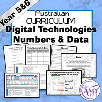 Year 5 & 6 Digital Technologies- Numbers & Data Unit