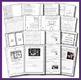 UPDATED HASS Year 6 Australian History Experiences of Demo