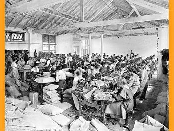 Year 9 History Australia 1900-1914
