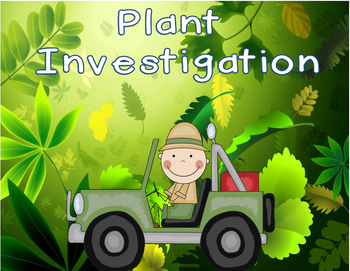 Grade 3 Science: Plant Investigation
