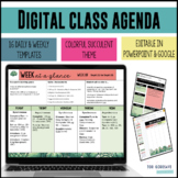Daily & Weekly Agendas Google Slide & PowerPoint  - SUCCULENT THEME