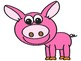 Year of the Pig Reward