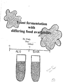 Exploring Yeast Activity with Differing Food Availability