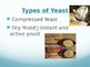 Yeast Notes PowerPoint