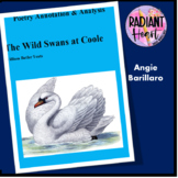 Yeats' 'The Wild Swans at Coole' Poetry Annotation & Analysis