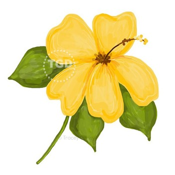 Yellow Hibiscus Illustration, Hibiscus clip art Printable Tracey Gurley Designs