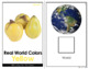 Yellow - Real Life Colors Adapted Book Bundle | Real Picture Color Books
