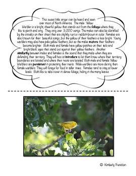 Yellow Warbler: Non-Fiction Literacy Center or Close Reading Pocket Folders