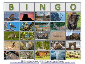 Yellowstone National Park Bingo