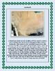 Yemen Geography Maps, Flag, Data, Assessment - Map Skills Data Analysis