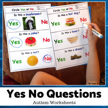 Yes No Questions for Speech Therapy, Autism