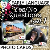 Yes No Questions (Speech Therapy, Autism, Special Educatio