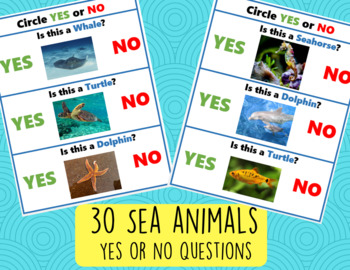 Yes No Questions 30 Special Needs Autism Young Learners Activities