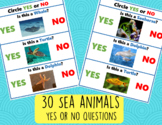 Yes No Questions 30 Special Needs Autism Young Learners Ac