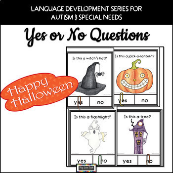 Yes No Questions Bundle 2 - Autism, Special Education, Speech Therapy