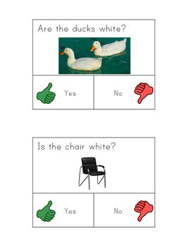 Yes No Questions for Autism or Special Needs- Colors