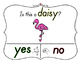 Yes No Questions with Visuals ~ Letter D Sound / Sight Rec