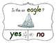 Yes No Questions with Visuals ~ Letter E Sound / Sight Rec