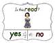 Yes No Questions with Visuals ~ Letter R Sound / Sight Recognition Speech