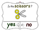Yes No Questions with Visuals ~ Letter S Sound / Sight Rec