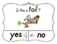 Yes No Questions with Visuals ~ Letter T Sound / Sight Rec
