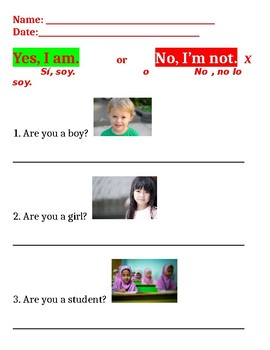 Yes/No questions worksheet