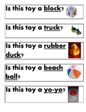 Yes and No Questions practice for Autism