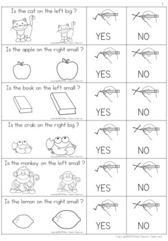 Yes or No Questions - Big or small - Special Education