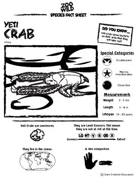 Yeti Crab -- 10 Resources -- Coloring Pages, Reading & Activities