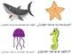 Yo tengo, Quién tiene? Animales del mar