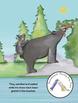 Yoga Book for Kids - Mia's Mountain Hike