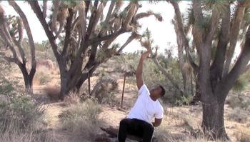 Yoga Brain Break at Joshua Tree National forest