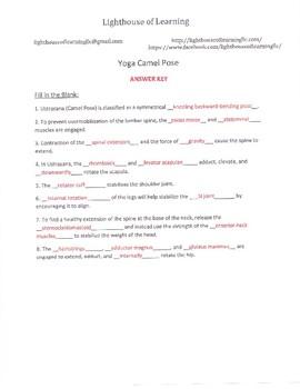 Yoga Camel Pose Anatomy materials