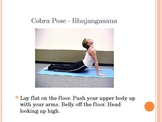 Yoga Lesson: Animal Poses