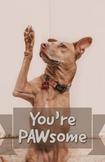 You're Pawsome Poster