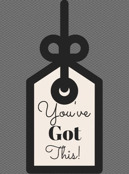 You've Got This Motivational Poster