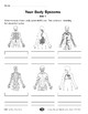 Your Body Systems