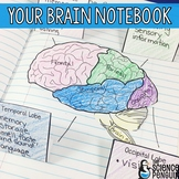 Brain Interactive Notebook Activities: Learning About Learning