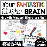 Your Fantastic Elastic Brain Activities for Upper Grades