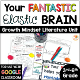 Your Fantastic Elastic Brain Activities for Upper Grades