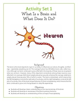 Your Fantastic Elastic Brain Common Core Aligned Lesson Plan