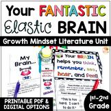 Your Fantastic Elastic Brain Activities for Lower Grades