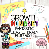 Your Fantastic Elastic Brain Growth Mindset Flip Book