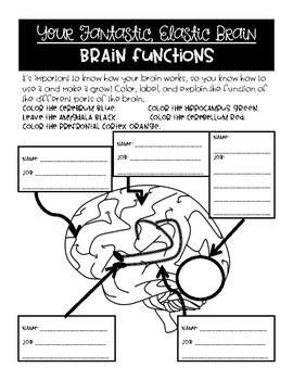 Your Fantastic, Elastic Brain - Growth Mindset Read Aloud Activities
