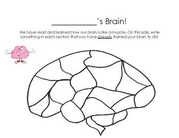 Your Fantastic Elastic Brain Worksheet by Second Grade Seedlings