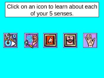 Your Five Senses Power Point Presentation