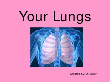 Your Lungs Power Point Presentation